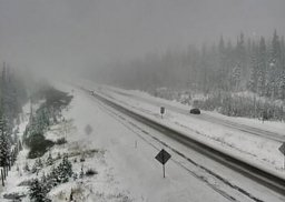 Continue reading: Snowfall alerts issued for mountain passes in B.C.'s Southern Interior