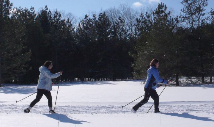 A file photo of cross-country skiers.