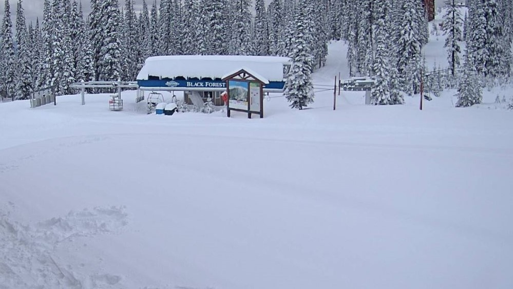 Weather conditions at Big White Resort's Black Forest chairlift on Saturday afternoon.