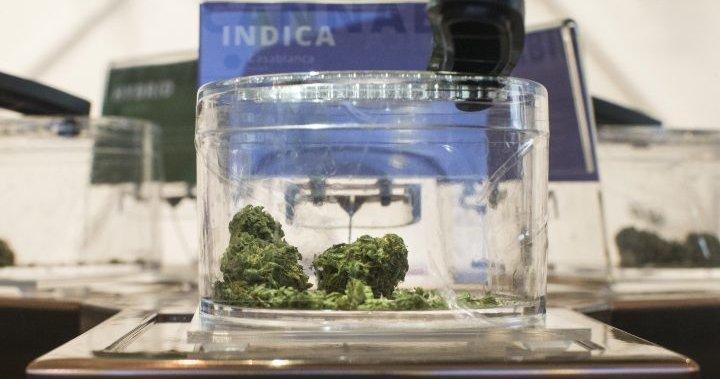 Coronavirus: Cannabis retailers plead with Ontario to allow reopening in lockdown zones