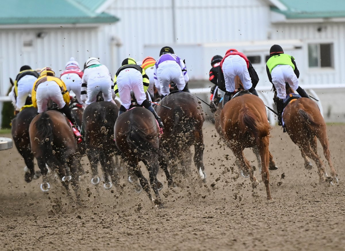Horses kick up dirt as jockeys ride on the first corner during the running of the 161st Queen's Plate at Woodbine Racetrack in Toronto on Saturday, September 12, 2020.