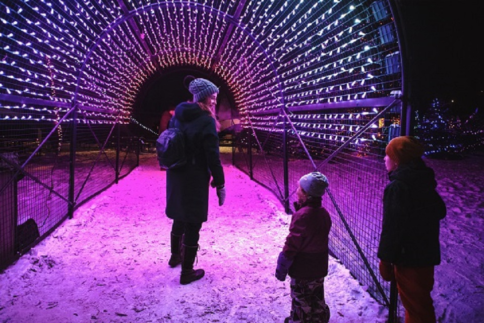 ZOOLIGHTS, presented by Olympia Trust Company, is back for its 24th year! Calgary's award winning, magical holiday tradition will be glowing for six weeks of festive family-friendly fun. We're committed to helping you enjoy the magic of ZOOLIGHTS in a safe and physically distanced way while supporting wildlife conservation. Dates: November 20, 2020 - January 3, 2021 (some exclusions apply) Timed tickets are required and must be purchased online in advance. Tickets will not be sold onsite. Tickets are available in limited quantities each night - first come, first served! Don't delay, get your tickets while you can!.