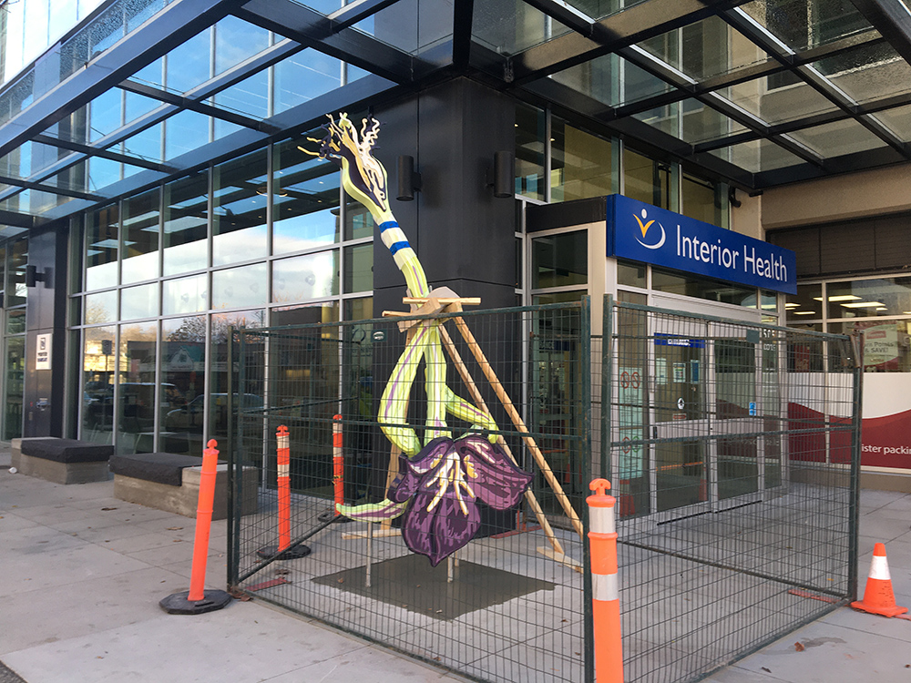 Titled 'Flower,' the 13-foot tall and 600-pound structure was installed this week in front of the Interior Health building in Kelowna.