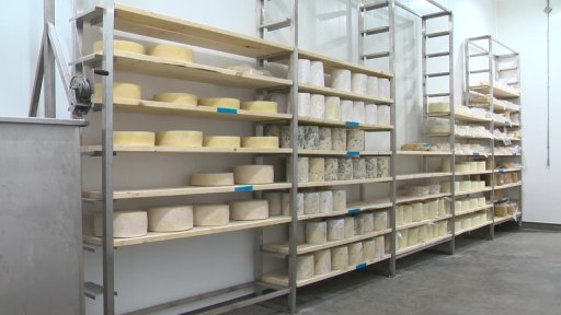Cheese aging at Lakeside Dairy before it is ready for sale.