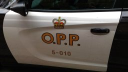 Continue reading: Peterborough County dog owners charged in separate attacks on neighbours' pets: OPP