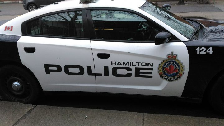 Hamilton police lay charges after house party in Flamborough that broke COVID-19 restrictions - image