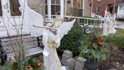 Continue reading: Hamilton hospice pleading for the return of one of its 'guardian angels'