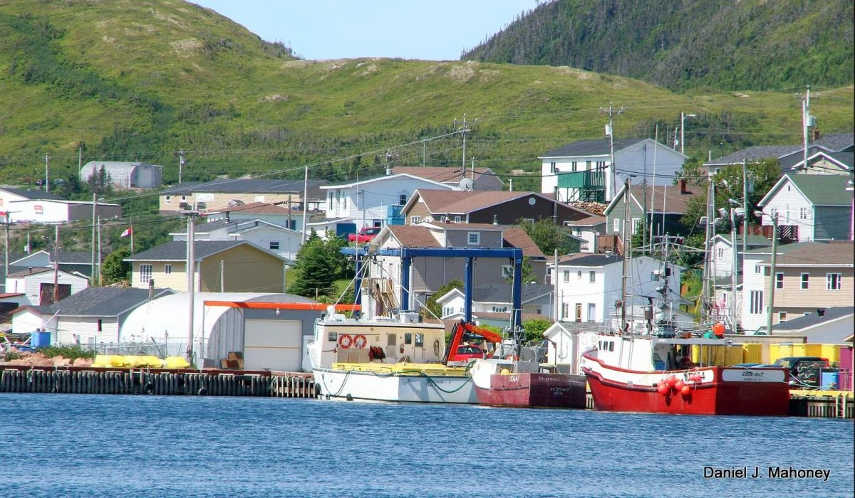 COVID-19 lockdown isn't easy, but these small Newfoundland towns are pulling it off - image