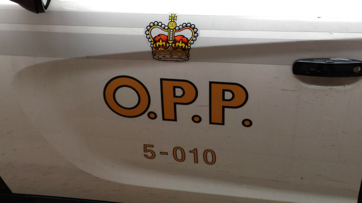 OPP in Haldimand County say a driver died after a crash on Highway 6 Sunday Oct. 10, 2021.