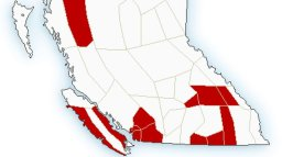 Continue reading: Winter storm warnings issued for Trans-Canada Highway, Highway 3 in southeast B.C.