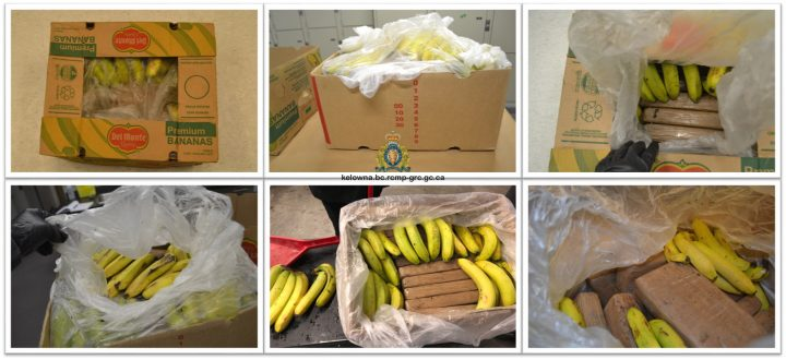 Kelowna RCMP say around 20 kilograms of cocaine has been seized from two banana shipments from Colombia.