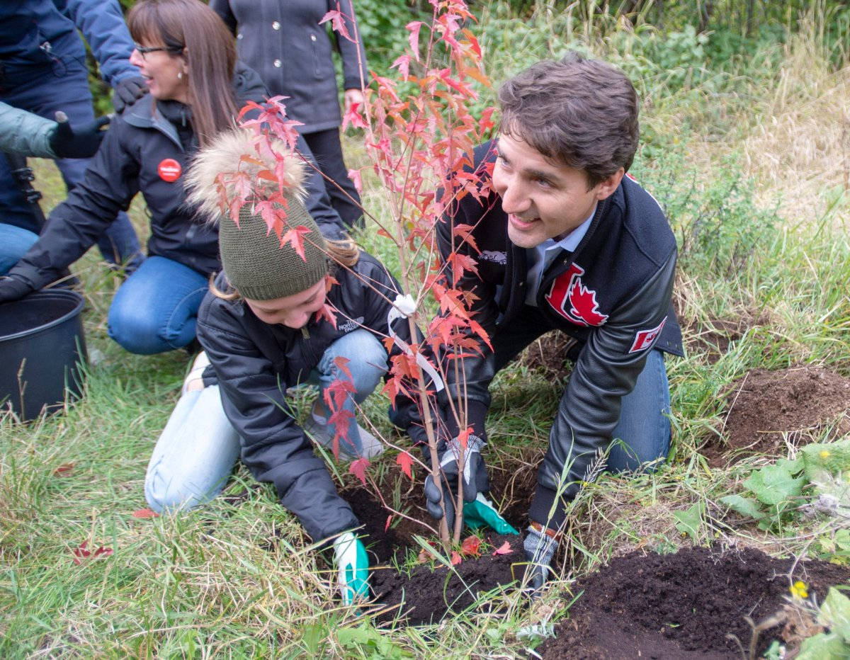 Liberal Leader Justin Trudeau and his daughter, Ella-Grace, plant a tree while campaigning in Saint-Anaclet, Que., on Friday, October 4, 2019.