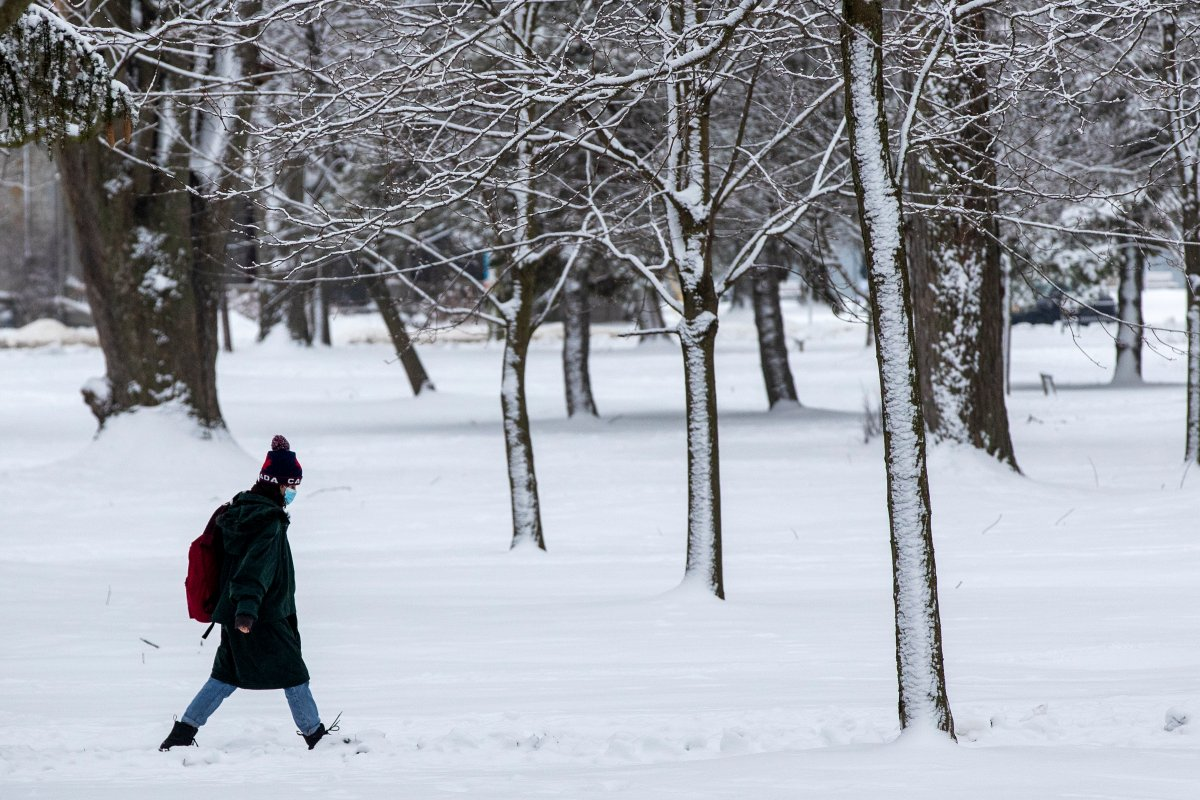A person wears a mask in a snow covered park in Kingston, Ontario on Monday, January 4, 2021, as the COVID-19 pandemic continues across Canada and around the world.