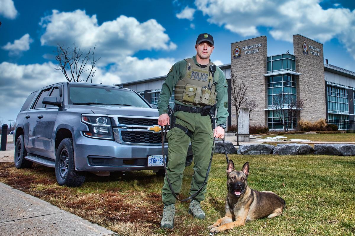 Meet Dak, Kingston police's new service dog.