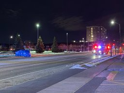 Continue reading: Person dead after collision in Mississauga: police