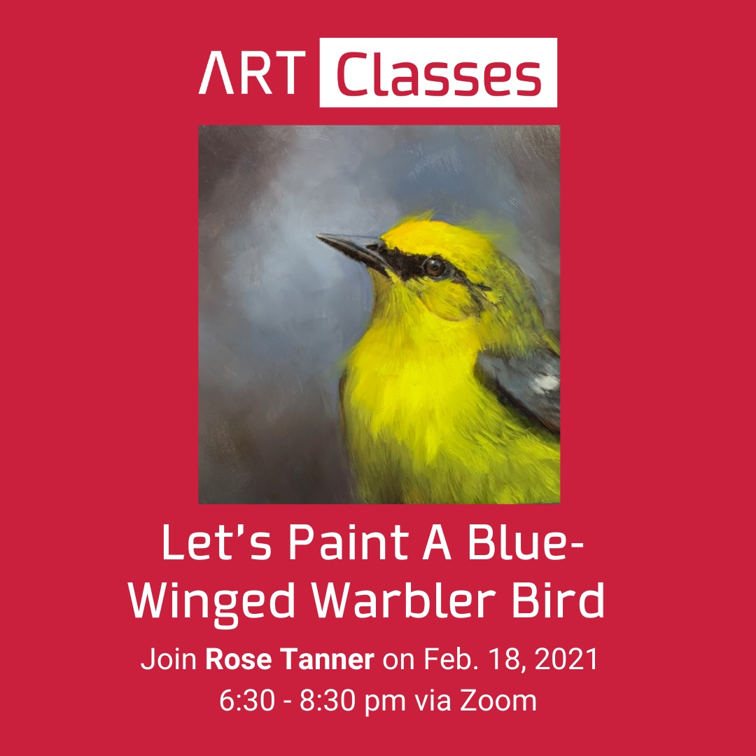 Let's paint a Blue-Winged Warbler. Learn how to create realistic birds, this live class will also focus on how to work with the color yellow. The class is for beginning/intermediate oil painters (acrylic painters welcome) Learn how to paint feathers, realistic eyes and beaks. You will also learn how to create a colorful portrait style background. Bird portraits are very satisfying to paint because they are easy, fast and you get to paint the bird's expression. Rose Tanner is an award-winning artist who loves the outdoors and studying birds. She is dedicated to portraying her subjects using traditional oil painting techniques, but she believes it's her attention to their inner being that gives them their lifelike quality in her paintings. She travels widely for her subjects and is active in supporting endangered birds and their habitat. Rose volunteers as a juror for the Federation of Canadian Artist (FCA) and sits on the FCA Victoria Board of Directors. She teaches online workshops and enjoys sharing her knowledge of realistic color mixing. https://www.rosetanner.com/.