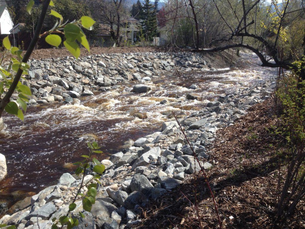 UBC Okanagan professor suggests new approach to 'limit disparities' in forest-water research - image