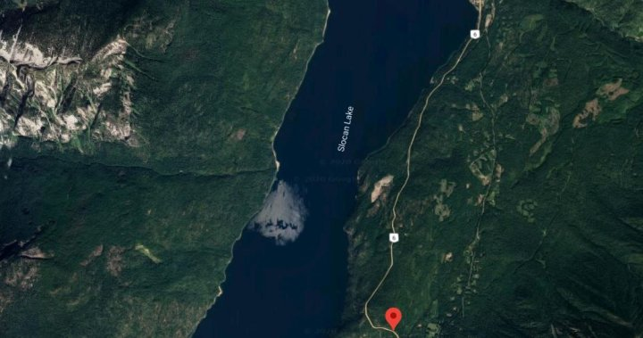 Bigfoot or moose? Possible sighting shocks, excites residents of small B.C. community