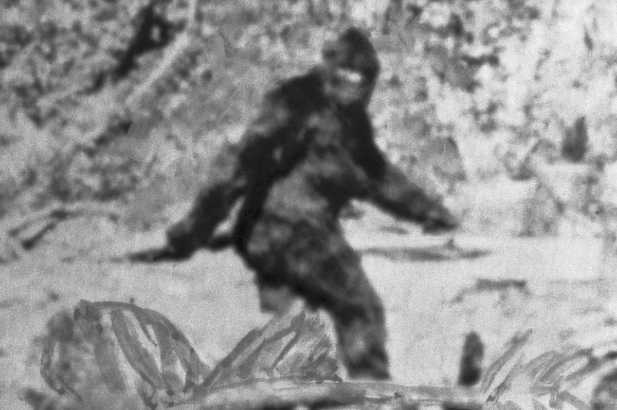 An alleged 'Bigfoot' is shown in this file photo.