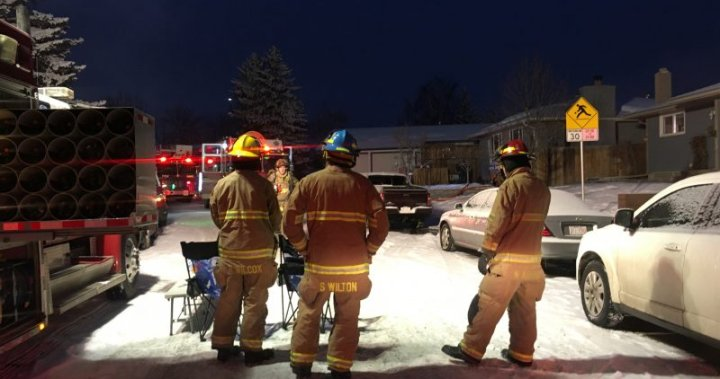 Calgary firefighters rescue dog from Dover house fire