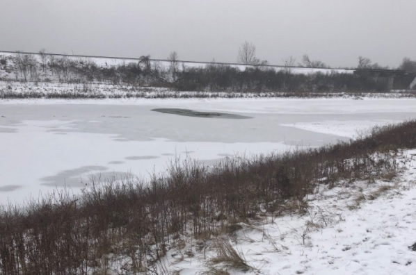 A man was pulled out of the water by a bystander after falling through the ice in northwest London.