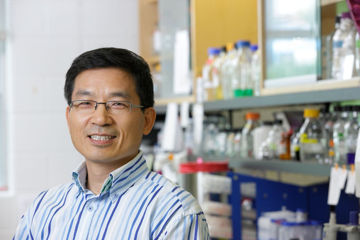 Western University professor Shawn Li.