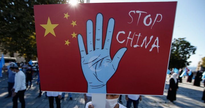 Solar power supply chain could be tainted with Uyghur forced labour, report says