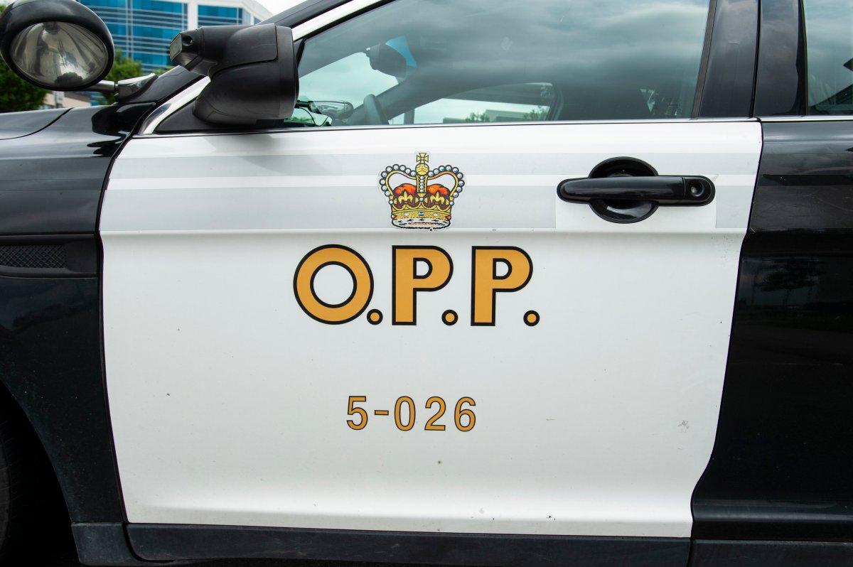 FILE - An Ontario Provincial Police cruiser.