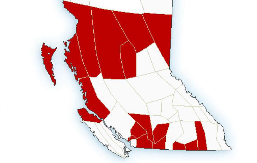 An incoming Pacific frontal system will spread snow across north-central B.C., from the coast to the Alberta border, plus mountain passes in the Southern Interior.