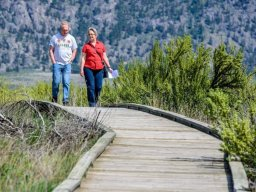 Continue reading: Osoyoos Desert Centre receives provincial funding to replace aging boardwalk