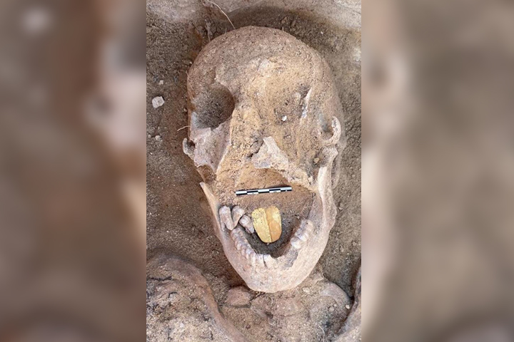 A mummy skull is shown with a gold-tongue amulet in its mouth in this image posted online Jan. 29, 2021.