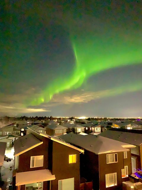 A shot of the northern lights taken the evening of Feb. 6, 2021, in the Edmonton neighbourhood of Windermere.