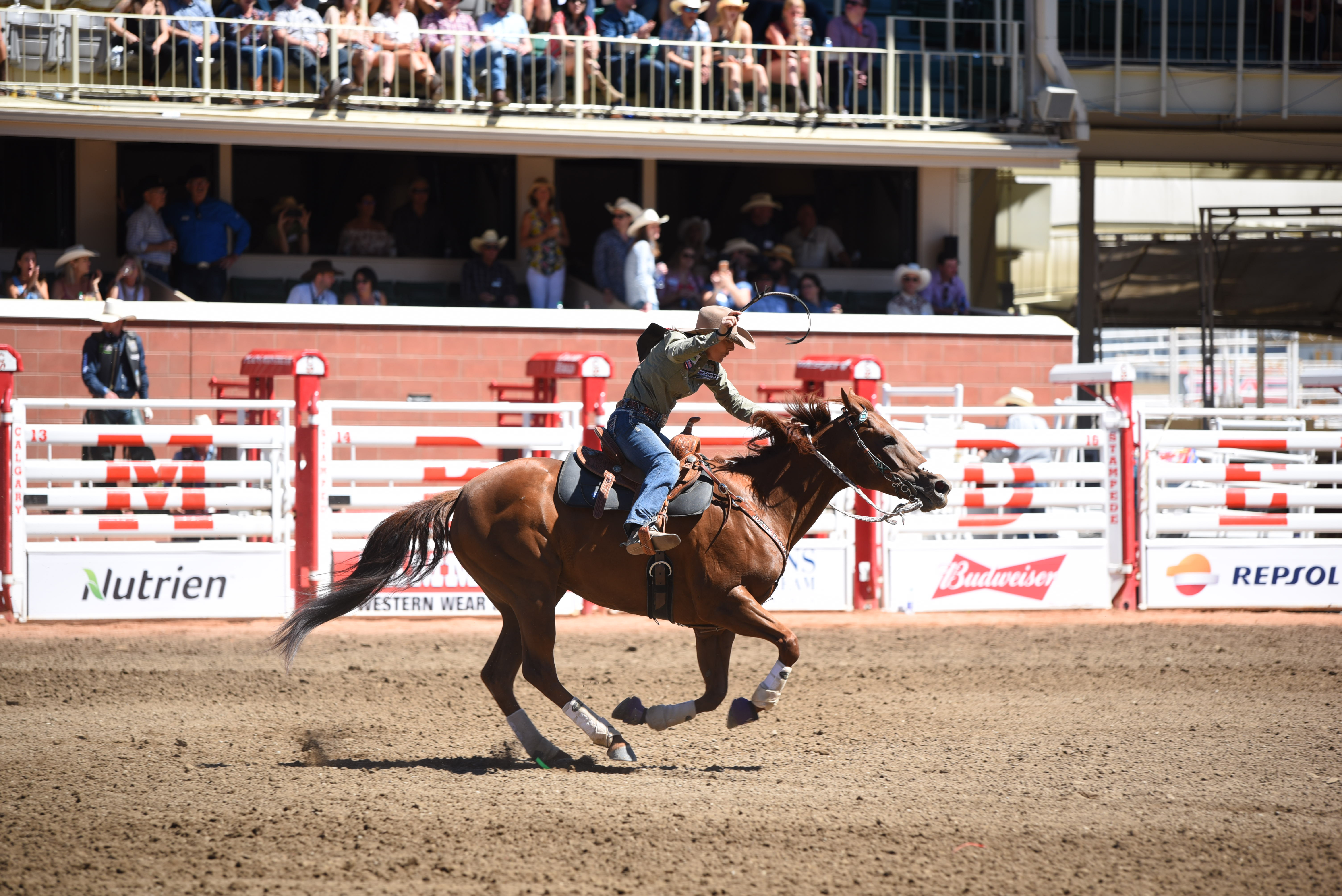 Should Alberta make rodeo the province's official sport?