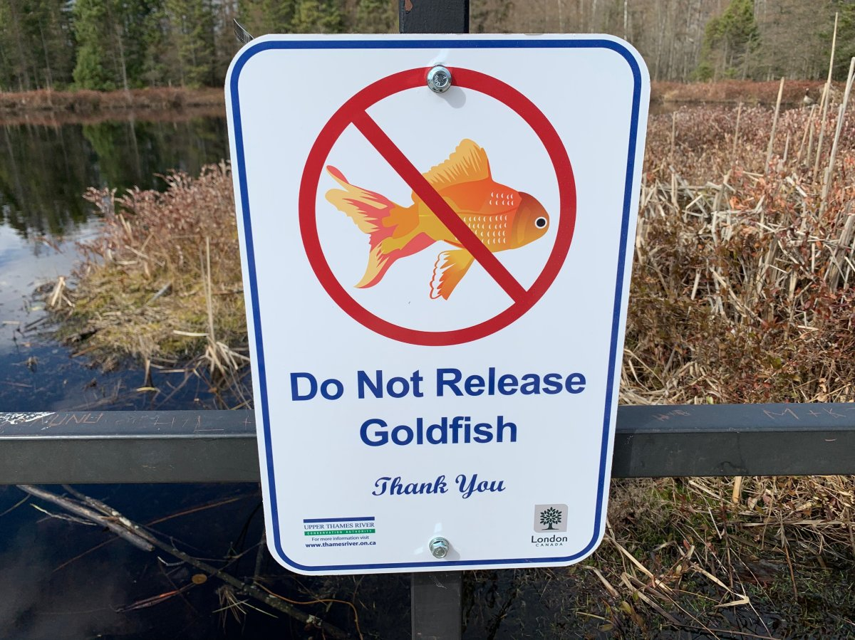 A sign at Sifton Bog in London, Ont., as seen March 29, 2021.