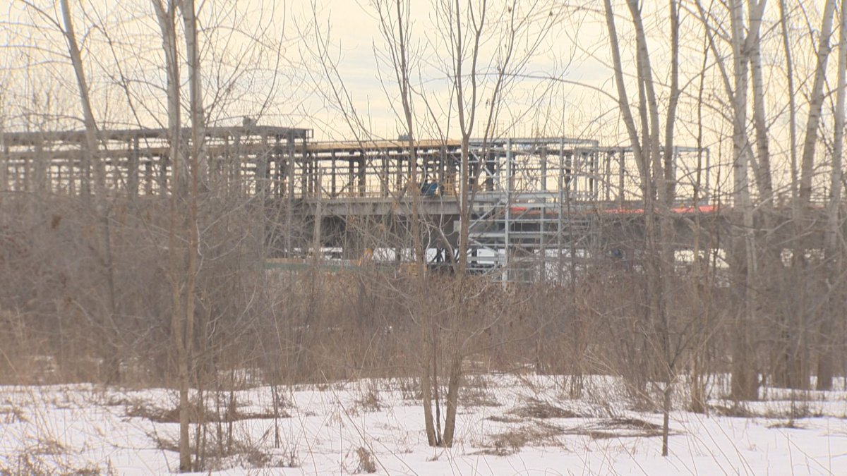 Future REM site looms in the distance as future development is planed for the wooded area.