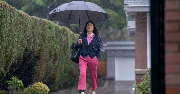 Defence to argue Meng Wanzhou didn't cause HSBC reputational risk at hearing