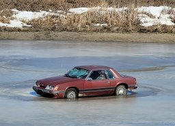 Continue reading: Anticipation rising for Mustang waiting to break through ice in Saskatchewan