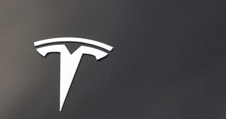 Texas police to demand Tesla share data from fatal crash to determine Autopilot use – National