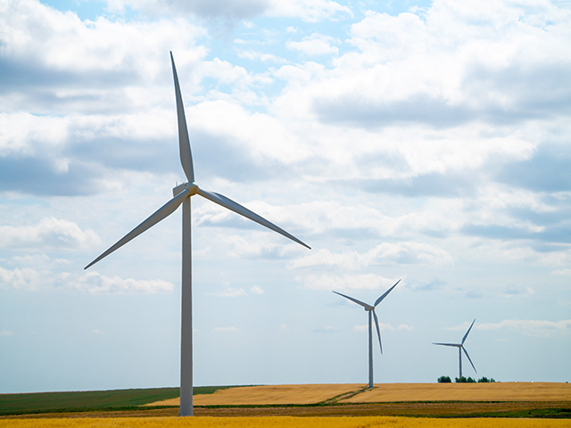 Turbines from SaskPower's Centennial Wind Farm facility in Swift Current.