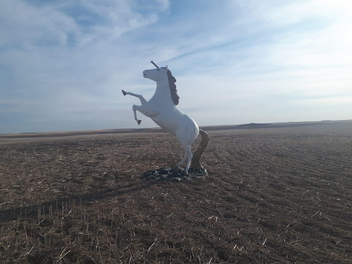 The RCMP forensics unit is looking into how this unicorn statue ended up in a farmers field.