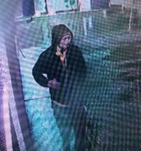 Image of the suspect released by police.