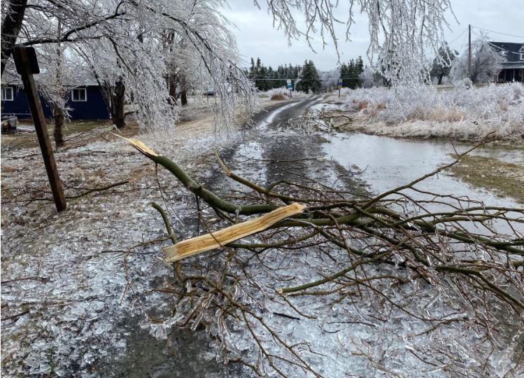 Freezing rain in Inverness County on Cape Breton has resulted in thousands of power outages. Ice is seen in Port Hood, N.S. on Sunday, April 4, 2021.