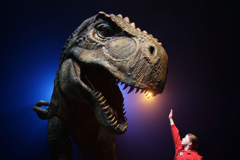 Girl gestures towards a Tyrannosaurus Rex at the media call for Walking With Dinosaurs - The Arena Spectacular at The Entertainment Quarter on Oct. 18, 2010 in Sydney, Australia.