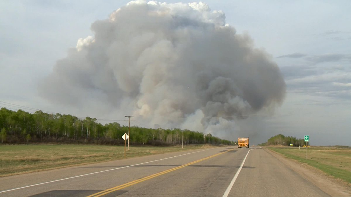 Investigators have determined that a lightning strike within the Prince Albert, Sask., city boundary on May 17, 2021, sparked the Cloverdale wildfire.