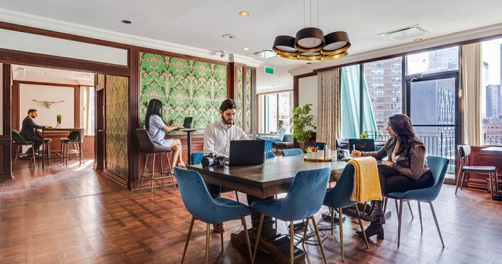 'Co-working is the future': How shared office spaces could transform the post-COVID workplace