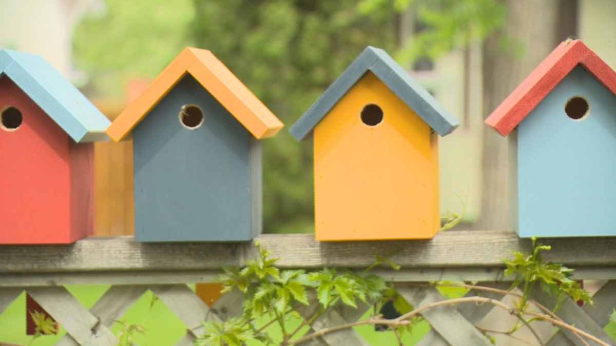 A Cathedral resident is distributing 50 birdhouses around the neighborhood thanks to a grant given by her local community association.