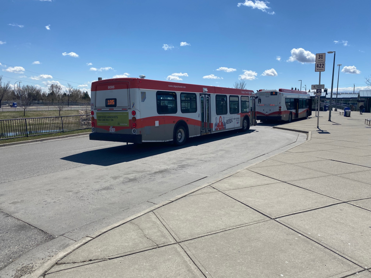 A man was critically injured after being hit by a Calgary Transit bus on Sunday night.