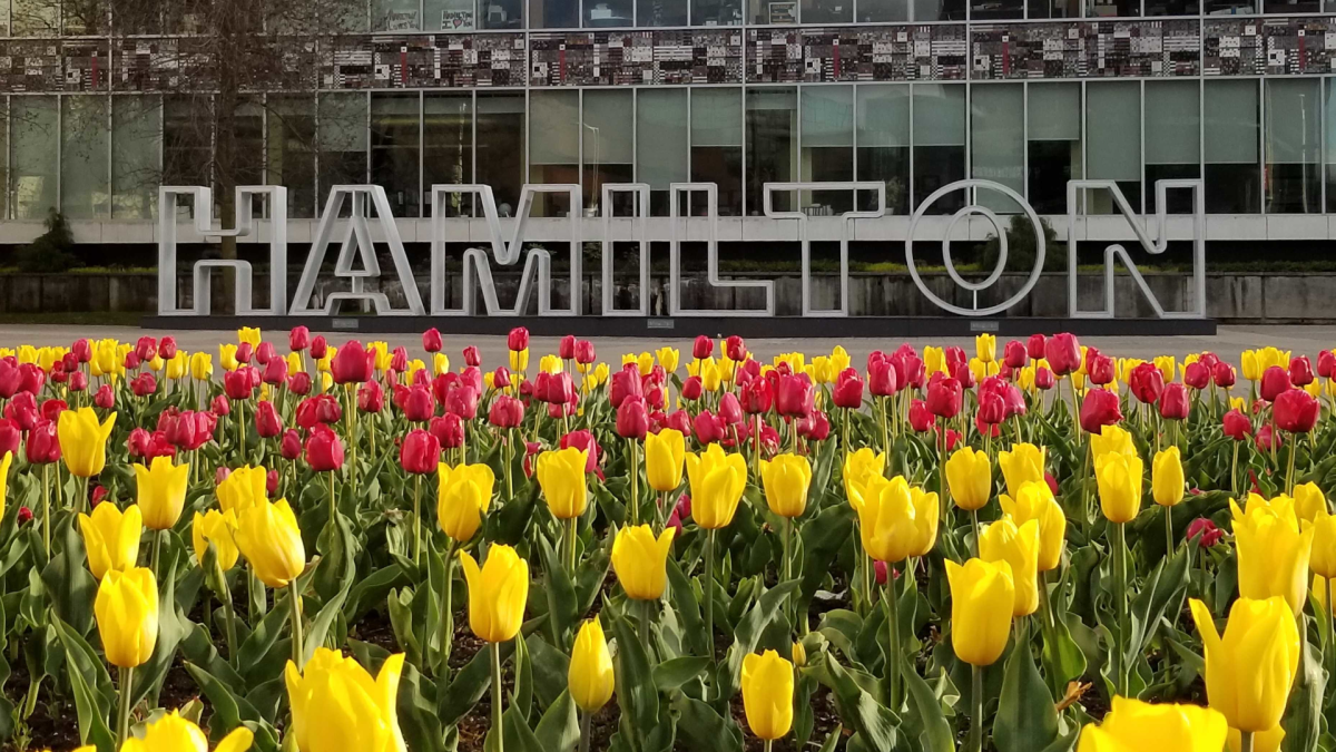 Two specialists say Hamilton has been particularly hit hard by pollen this spring compared to other regions in Canada.