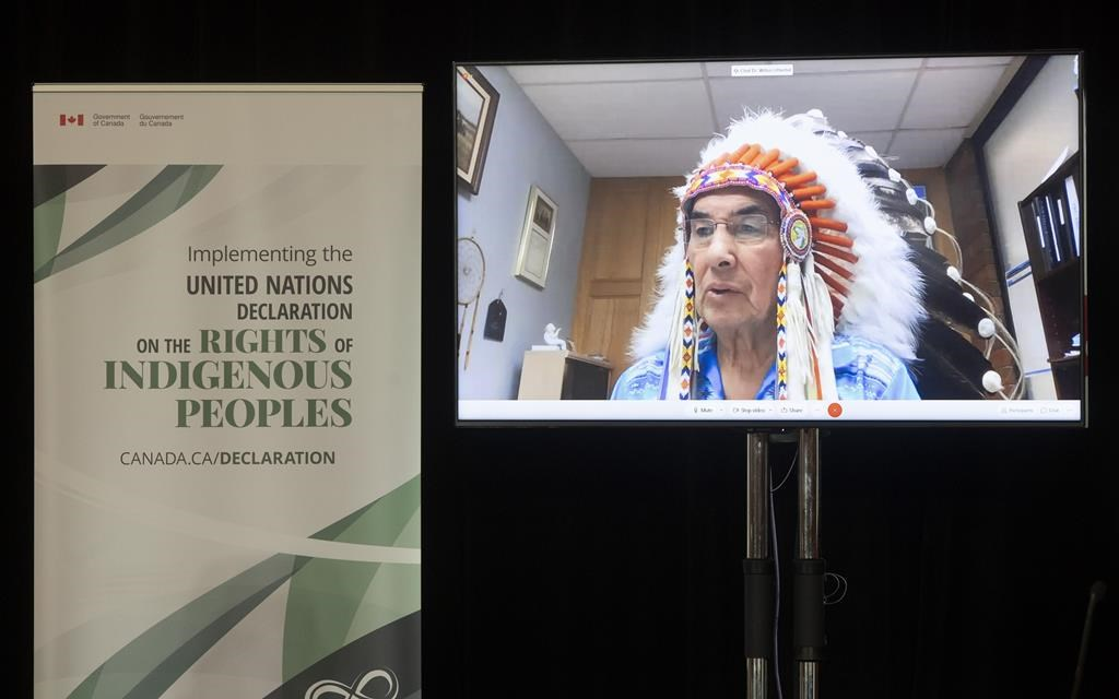 Grand Chief Wilton Littlechild speaks via video conference  during an announcement about the United Nations Declaration on the Rights of Indigenous Peoples, in Ottawa, Thursday, Dec. 3, 2020.THE CANADIAN PRESS/Adrian Wyld.