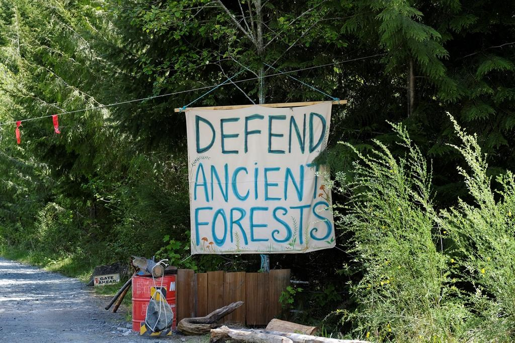 A sign is shown at the entrance to Eden blockade in the Fairy Creek area near Port Renfrew, B.C. on Tuesday, May, 11, 2021. Police arrested 18 people Friday as they continued to enforce an injunction against blockades set up to prevent old-growth logging on southern Vancouver Island. THE CANADIAN PRESS/Jen Osborne.
